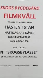 filmkväll 30 mars