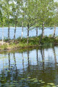 spegling-skogsand-foto-av-jb-16